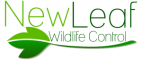 New Leaf Wildlife Control Logo