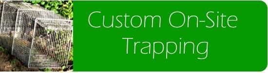 Custom Wildlife Trapping