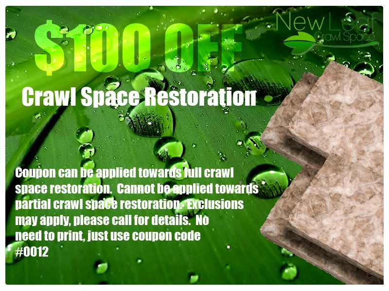 Crawl space restoration